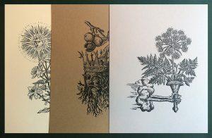 Arcana Viridia Print Portfolio